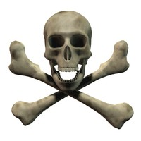 3d pirate skull crossbones model