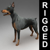 3d 3ds rigged doberman