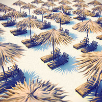 palm umbrella 3d model