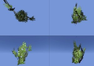 free bush 3d model