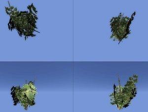 free obj model plants bush