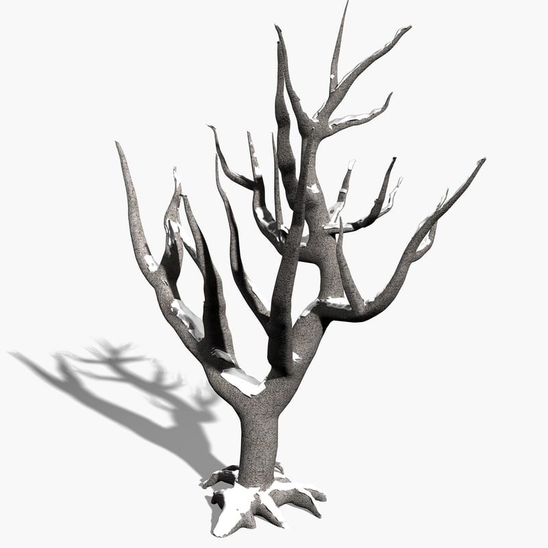 3ds max scanline winter tree snow