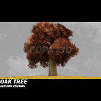 Oak Tree -Autumn version-