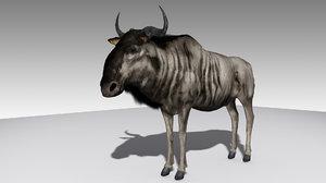 polygonal wildebeest max