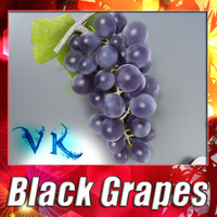 Photorealistic Black Grapes + High Resolution Textures