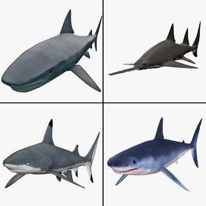 maya shark 4