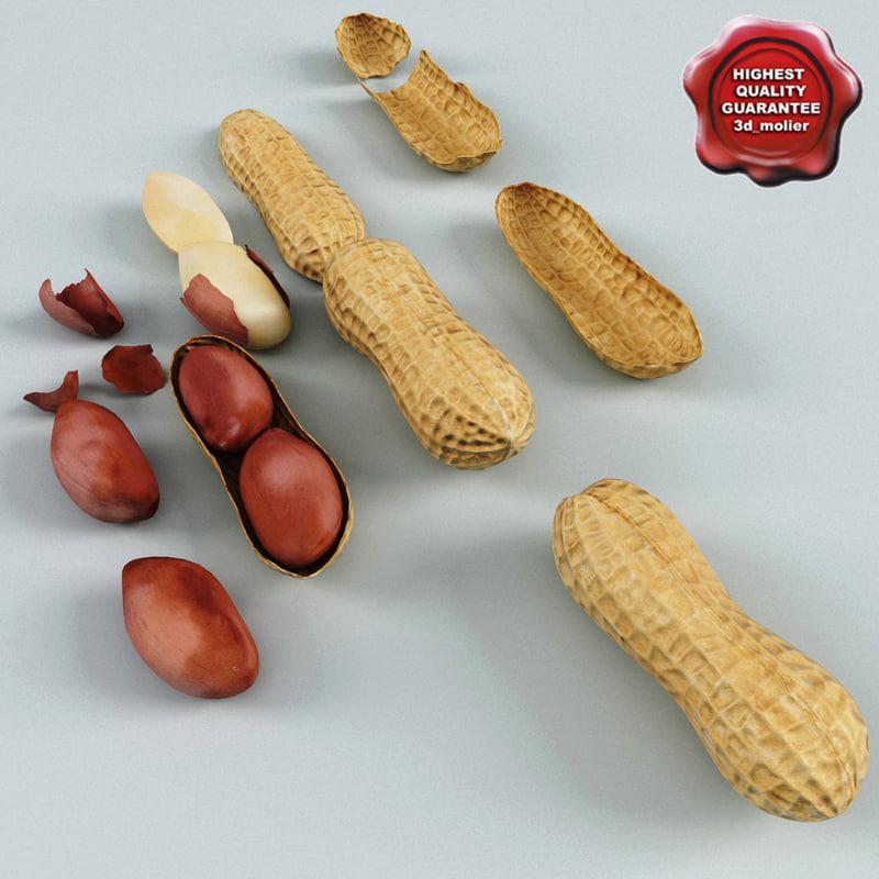 peanuts modelled open 3d max