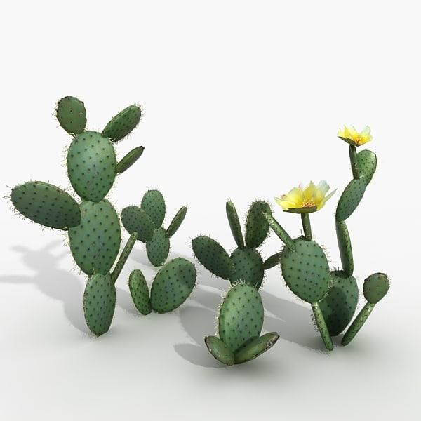 3dsmax opuncia cactus