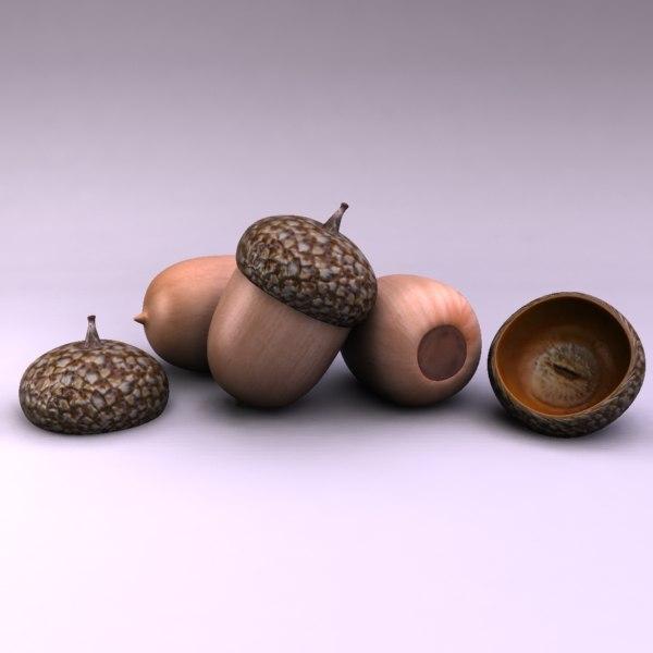acorn 3d max