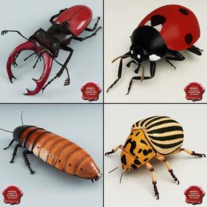 bugs set madagascar 3d max