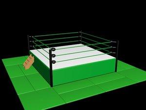 professional wrestling ring max