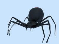 3d black widow spider