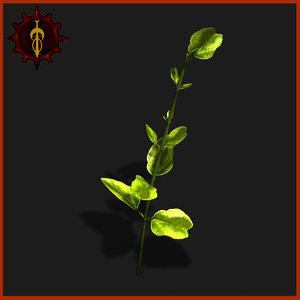 3d small plant model