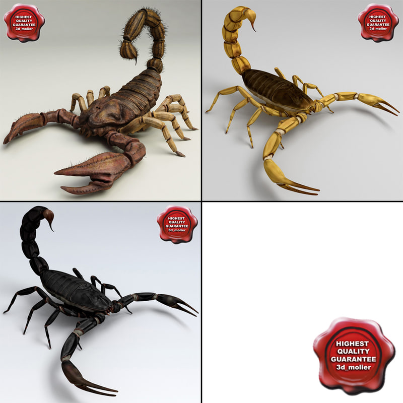 obj scorpions set modelled