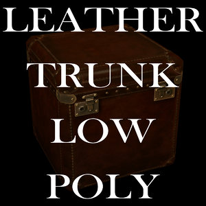 leather trunk 3ds