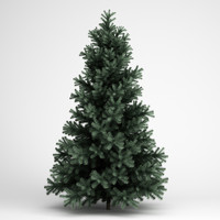3d alpine fir 25