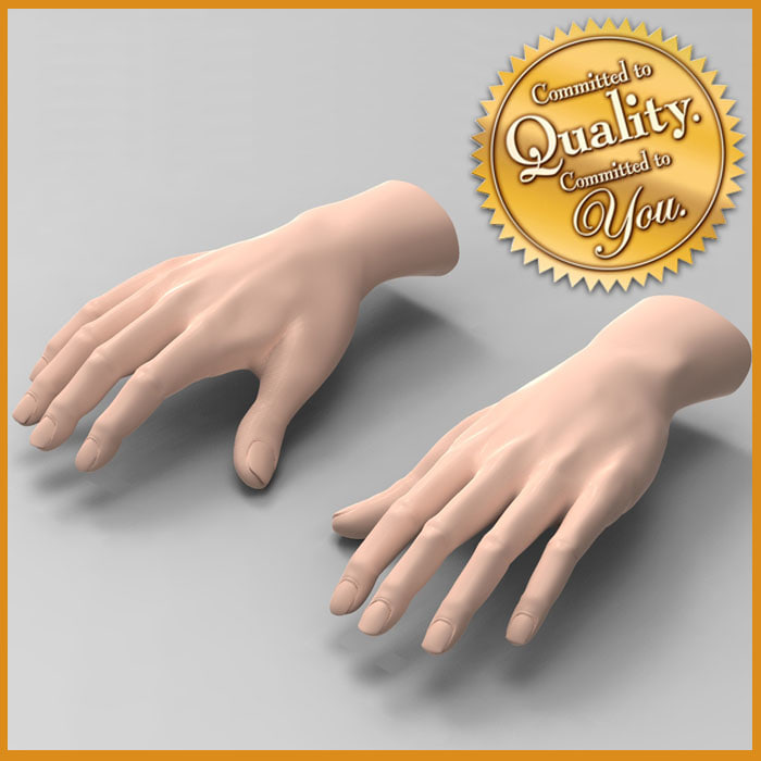 3d model female hands
