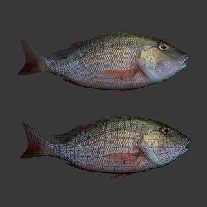 fish max free