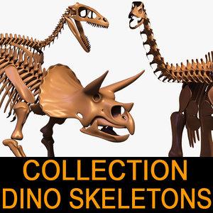 dino skeleton max