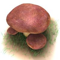 boletus mushroom 3d max