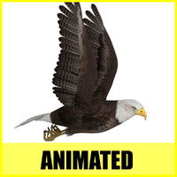 eagle flight flying animation 3d max