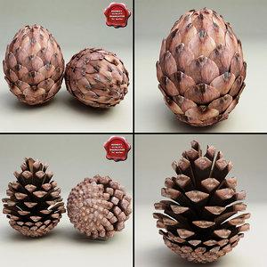 3ds max fir cones