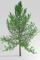 simple tree 3ds