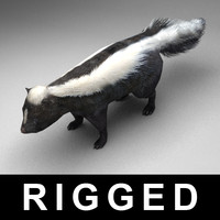 rigged skunk max