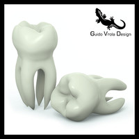3d model molar tooth
