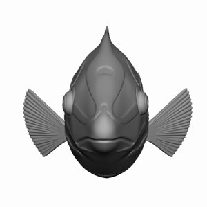 free obj mode checkerboard wrasse tropical fish