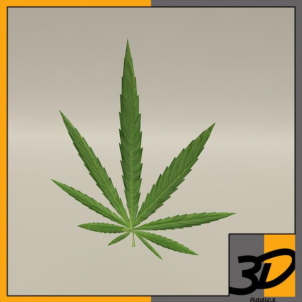 3d weed