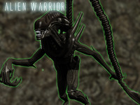 Xenomorph Alien Warrior