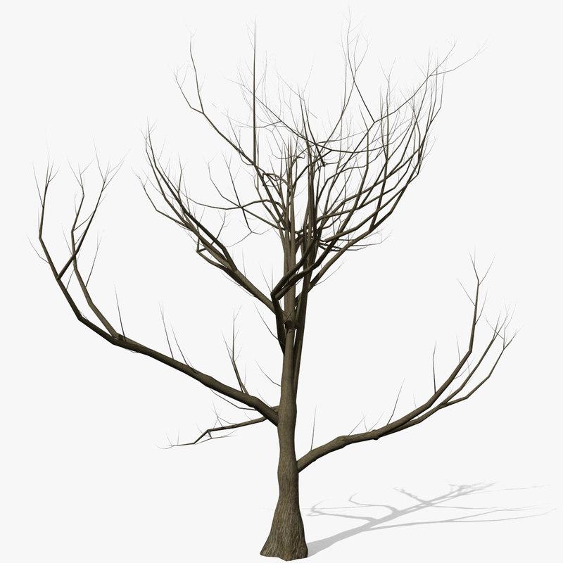 max tree leaves