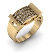 Jewelry ring(1)