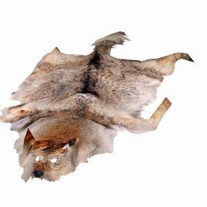 3d model wolf pelt