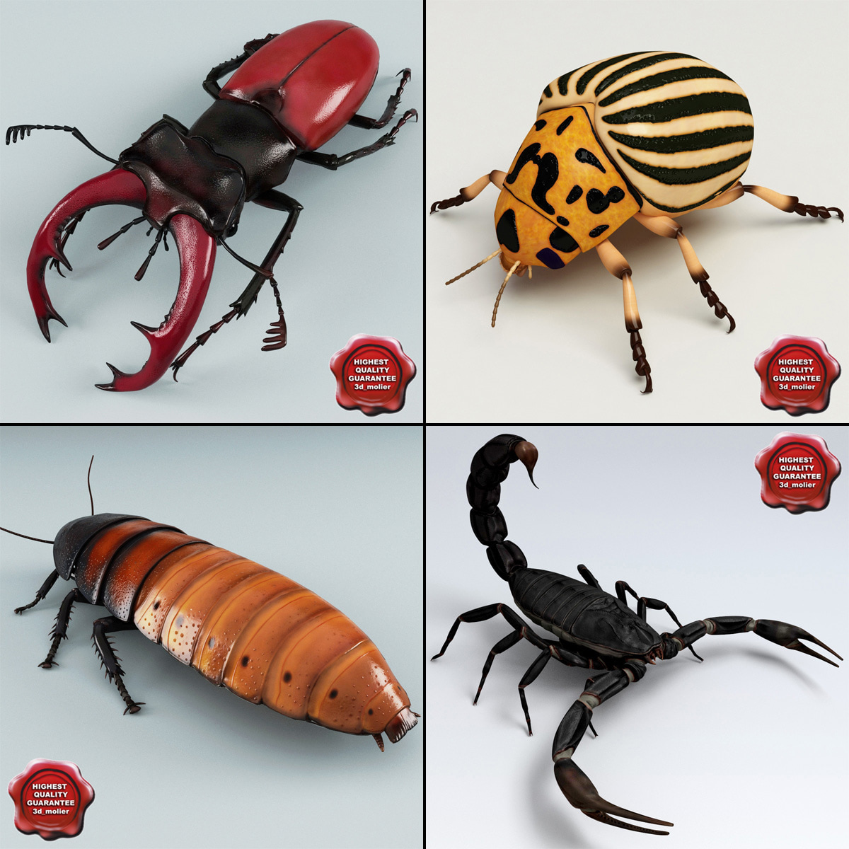 insects v3 3d model