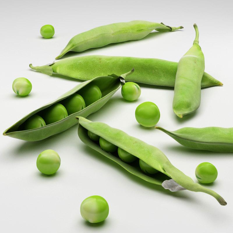 3d model peas