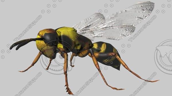 wasp fbx