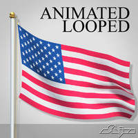 USA Flag Animated Loop