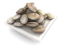 3d clam
