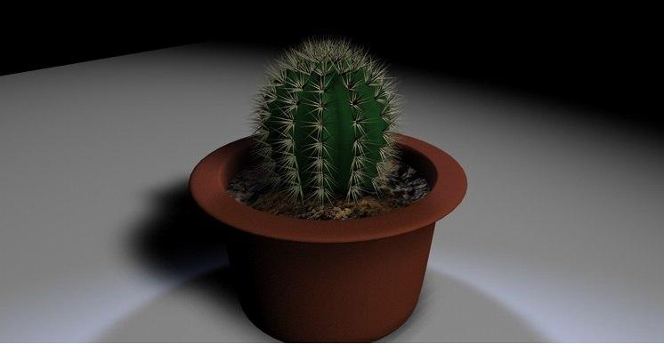 cactus c4d