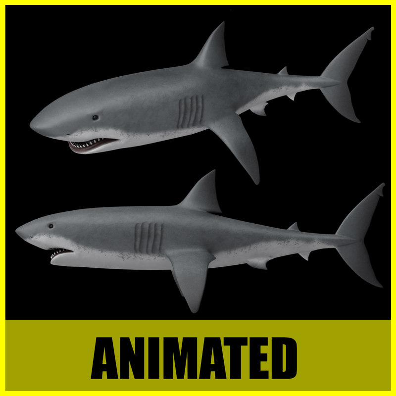 lightwave shark animation