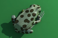 obj leopard frog animation