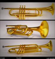 maya trumpet brass