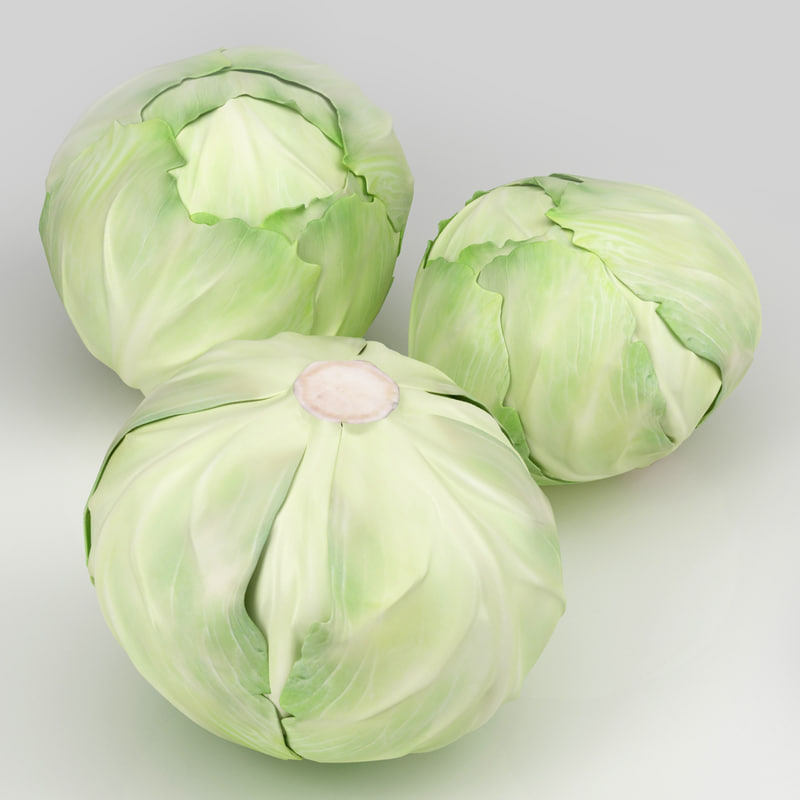 cabbage 3d max