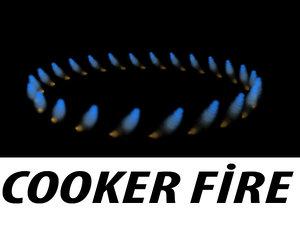 cooker particle flow 3d model