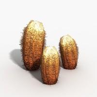 barrel cactus 3d max