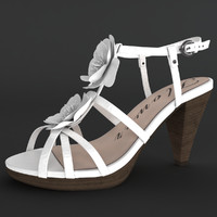 Female Shoes 3d Model