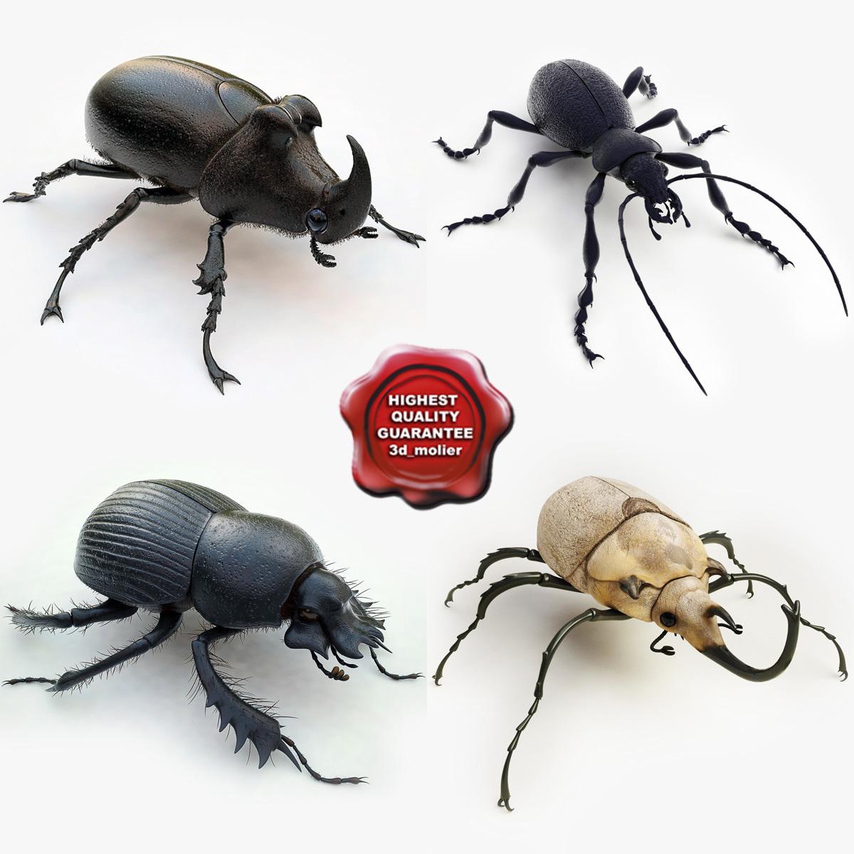 bugs v2 3d 3ds