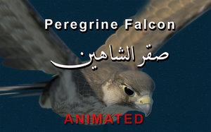 3d model peregrine falcon wings folded